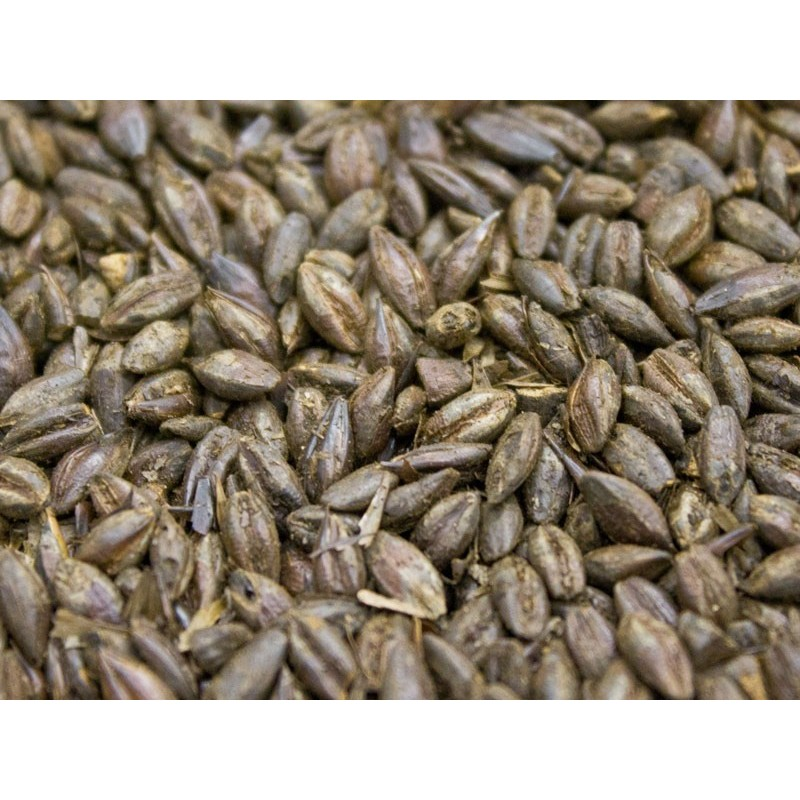 Organic Roasted Barley