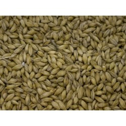 Red X malt (GER) (1lb)