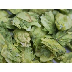 Bramling Cross Whole Hops  (UK) (1oz)