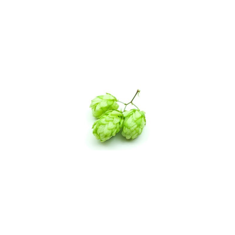 Mosaic Whole Hops (1oz)